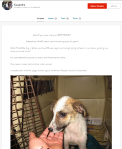 Animal Aware supporter Kassandra makes her own appeal by telling the personal story of why she's involved. She also includes an adorable puppy picture, which never hurts. (Click the picture to enlarge)