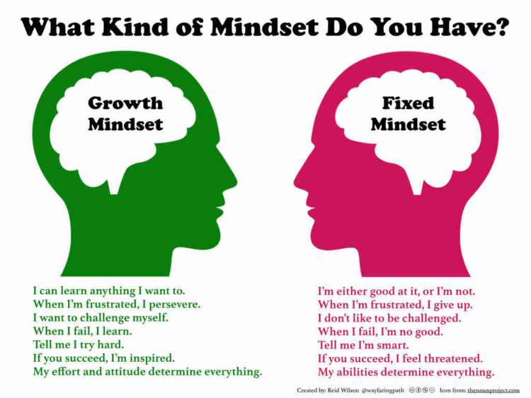 What's Your Mindset